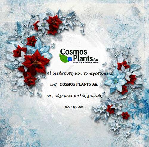 cosmosplants-card